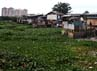 Menurut Kepala Dinas Pertamanan dan Pemakaman DKI Jakarta Catharina Suryowati, untuk melakukan pembebasan lahan ini telah disediakan anggaran sebesar Rp 300 miliar.