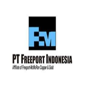 Dinilai Jadi Sumber Masalah, Freeport Diminta Ditutup