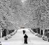 Pesona Musim Salju di Eropa