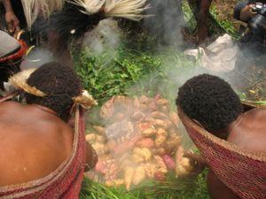 Upacara Bakar Batu di Kampung suku Dani, Wamena