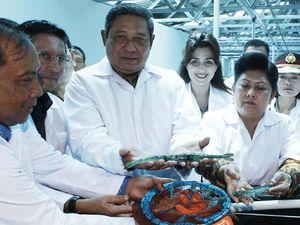SBY Resmikan Balai Produksi Induk Udang Unggul