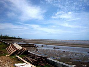 Jalan Jalan Siang di Siberut