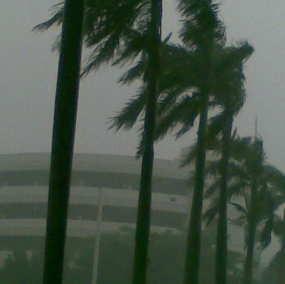 Ketidakpastian Prediksi Cuaca, Kasus La Nina 2010/2011
