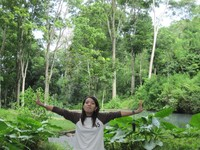 Dalam kesunyian hutan