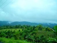 View menuju Curug Luhur