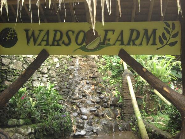 Warso Farm
