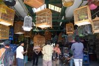 Suasana pintu masuk Pasar Burung (dok. Sastri/ detikTravel)