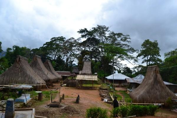 Hasil gambar untuk kampung wolojita