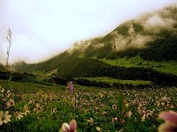(trekkingindia.net)