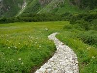 Jalur menuju makam Legge (wn.com)