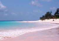 Pink Sands Beach (best-beaches.com)
