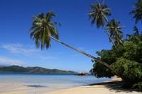 Nyiur dan Pantai Pulau Cubadak