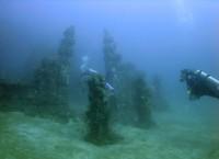 Menyelam di antara gapura candi bawah air (indonesia-scuba.blogspot.com)