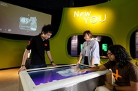 NEW YOU (sumber: science.edu.sg)