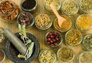 Jaya Suprana: Jangan Ganti Istilah Jamu dengan Herbal