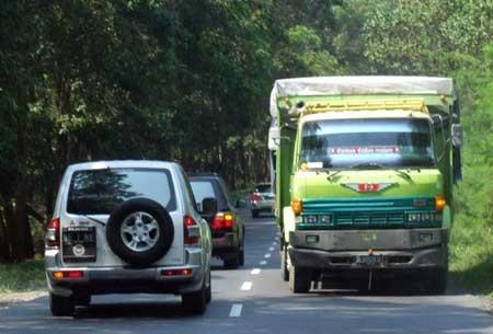 Jalur Lintas Sumatera (Ramadhian Fadillah/detikFoto)