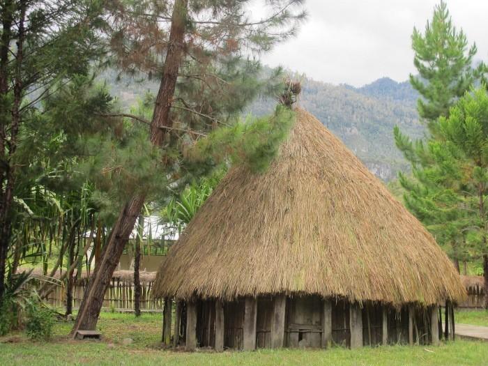 Honai di Distrik Wosilimo, Papua (Sastri/ detikTravel)