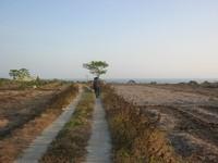 Suasana perjalanan menuju Pantai Buyutan