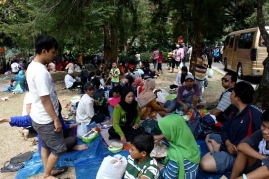 Salah satu keluarga yang asyik menikmati makan siang di bawah pohon (Desi Puspasari/detikTravel)