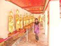 Patung Budha dalam berbagai versi.jpg