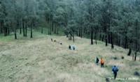 Jalur menuju Gunung welirang dari gunung Arjuno.