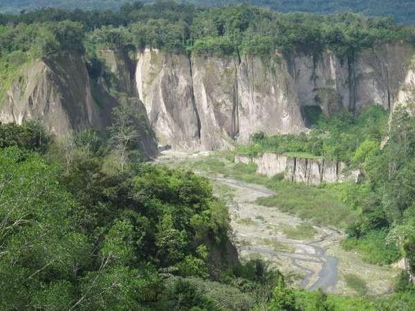 Ngarai Sianok , keindahan dari Bukittinggi (Afif/detikTravel)