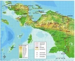 8 Personel TNI Tewas di Papua, Salah Satunya Anggota Kopassus