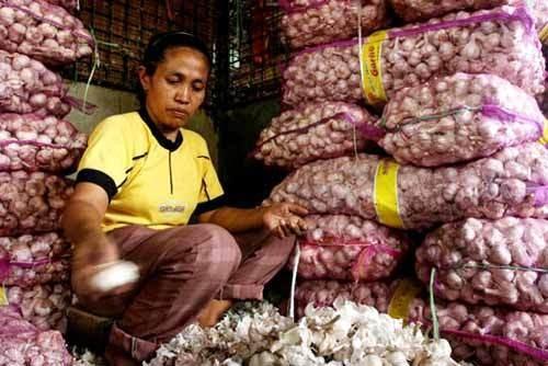 Gita Wirjawan: Harga Bawang Putih Naik Karena Kita Ketergantungan Impor
