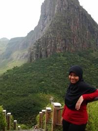 Panorama dari tangga menuju puncak Gajah Mungkur