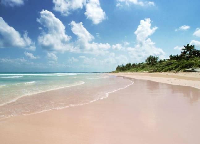 The Pink Sands Beach di Harbour Island, Kepulauan Karibia (gocaribbean.com)