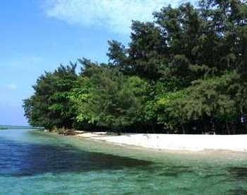 Pulau Semak Daun (Cumi Toro/ d'Traveler)