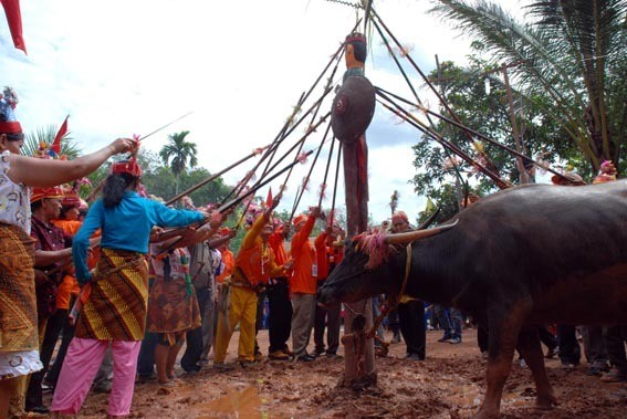 Salah satu ritual Tiwah (centralborneo.net)