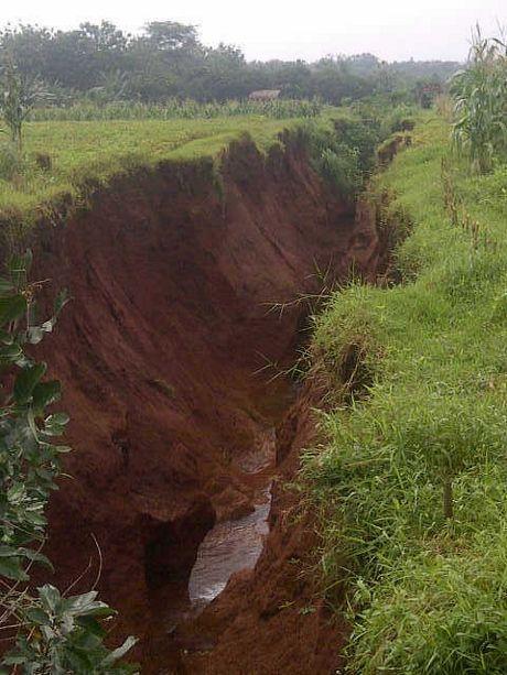 Ada Fenomena Tak Terduga di Jepara, Tanah Terbelah di Sawah dan Rumah