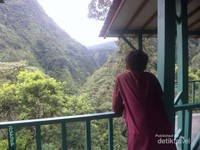 Gardu pandang di Kawasan Hutan Tropis