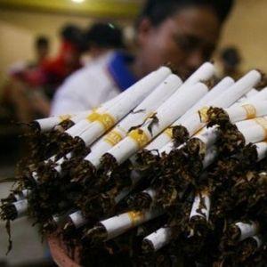 Industri Rokok RI Sedang Krisis, 2,1 Juta Petani Tembakau Galau