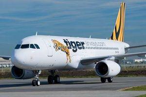 Tigerair Mandala Tutup, Sandiaga Uno: Bisnis Penerbangan Sudah Tak Ekonomis