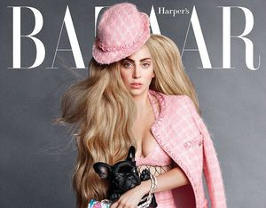 Lady Gaga Ajak Anjingnya Jadi Model High-Fashion Untuk Harpers Bazaar