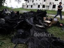Ini Kondisi Pesawat yang Terbakar di Pondok Cabe