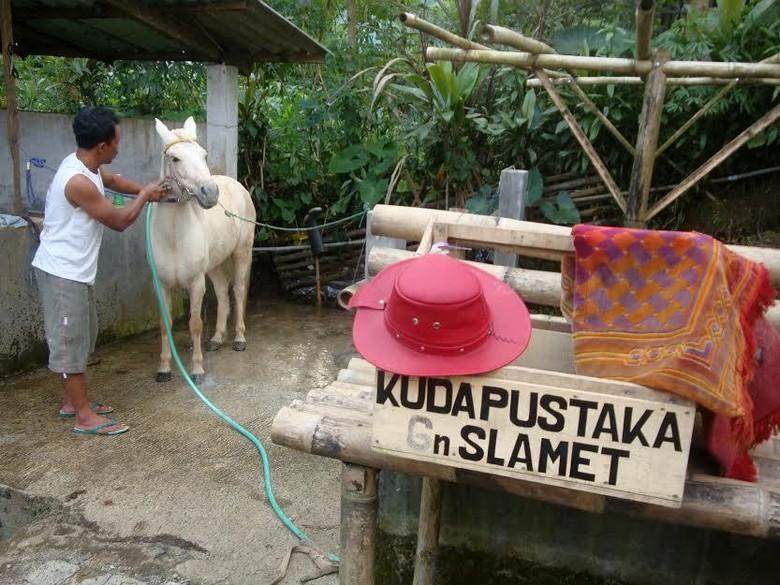 Ridwan, Penyebar Ilmu Kuda Pustaka di Pelosok Purbalingga yang Mendunia