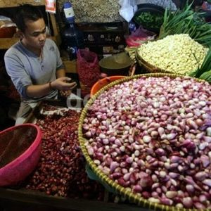 Ini Pesan Petani ke Jokowi Soal Bawang Merah Impor