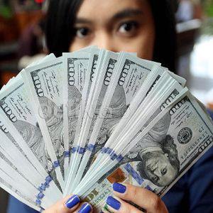 Dolar Masih Bertahan di Rp 13.300, Ini yang Diwaspadai Agus Marto