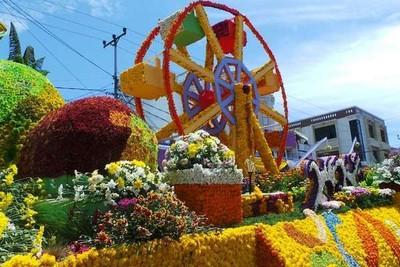 Ada Festival Bunga Kelas Dunia di Tomohon