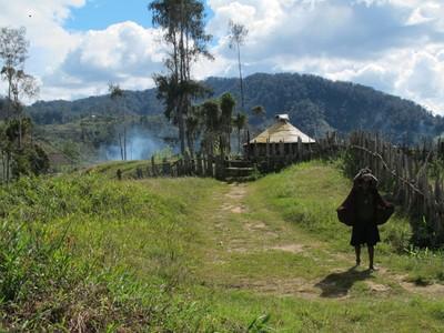 Potret Kehidupan Orang-orang Pedalaman Papua