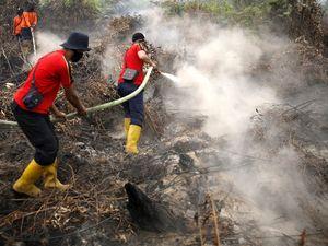 Perjuangan TNI Padamkan Kebakaran Hutan