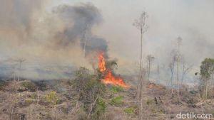 6 Gunung Sudah Terbakar, Pendaki Harus Berhati-hati