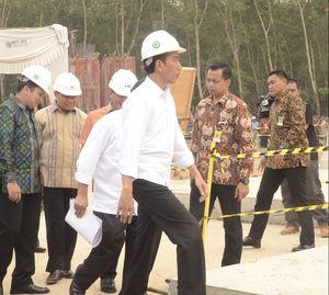 Ini Alasan Jokowi Suntik Modal ke BUMN