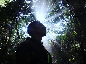 Beragam Flora di Taman Nasional Gede Pangrango