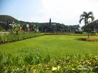 Hijau rerumputan di sekitar taman