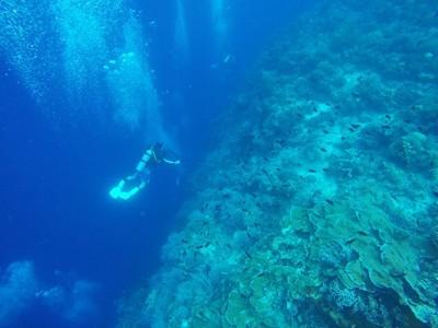 Bunaken, Menyelam di Sekeping Surga yang Jatuh di Manado