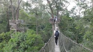 Bertemu Pesut Langka di Sungai Mahakam & Aneka Destinasi Seru di Kutai Kartanegara